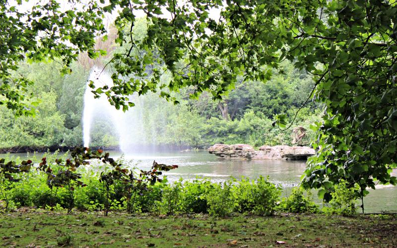 IMG_0435 - St. James Park