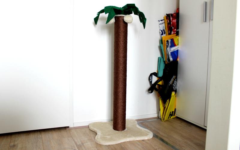 Palmboom krabpaal